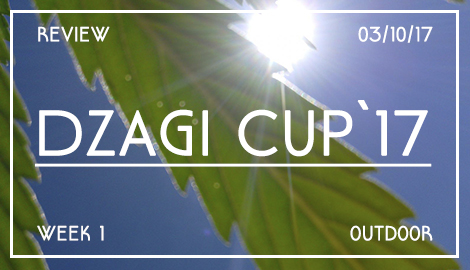 Новости DzagiCup17: Аутдор и Культура. Неделя 1