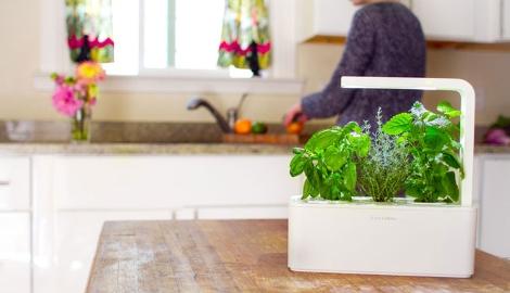 Smart agro: как умные агротехнологии приходят к нам домой