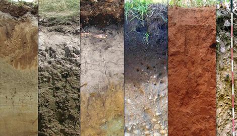 Структура и химия почв