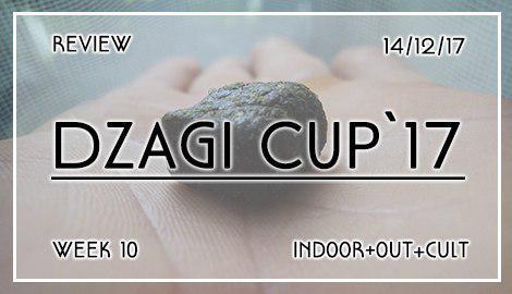 Новости DzagiCup17: Обзор 10 недели