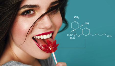 Смысл каннапитания. Как «вкусняшки» действуют на вас?