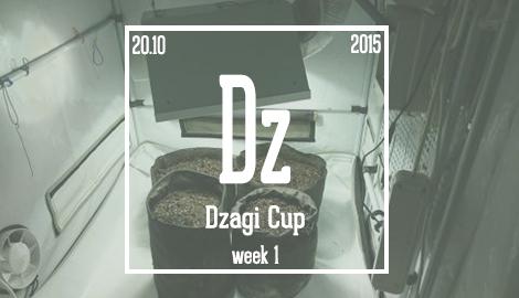 Новости DzagiCup'15. Начало. Неделя 1