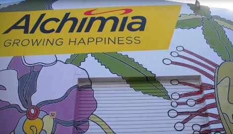 Видео: Путешествие по Alchimia Growshop