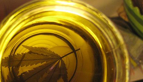 Великобритания впервые разрешила применить канна-масло в медицине