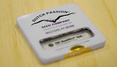 Новая упаковка семян Dutch Passion