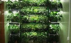 Лаборатория E-mode: Растениеводам в помощь