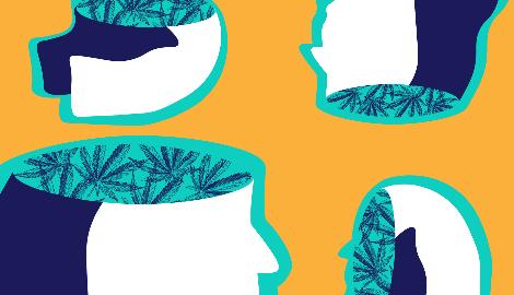 Исследование: каннабис не лечит психические заболевания