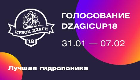 Голосование DzagiCup`18: лучшая гидропоника