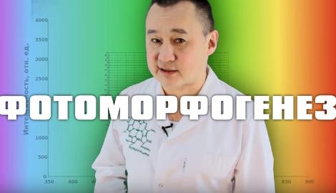Лекция Горшкова: Фотоморфогенез, Аграрный Китай. 3 марта. ОБНОВЛЕНО