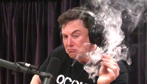 Илон Маск: Уголовное наказание за марихуану – это бессмысленно