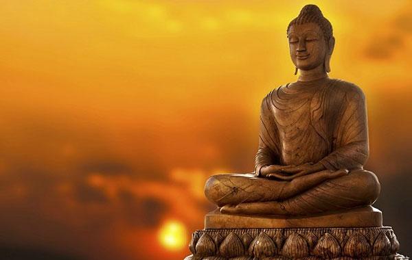 Buddha Seeds: Мы, словно Будда, движемся не торопясь, но по верному пути