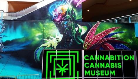 Лас-Вегас открыл музей Каннабиса