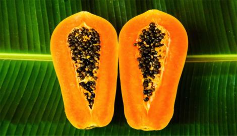 Papaya (Nirvana): вкус лета посреди зимы