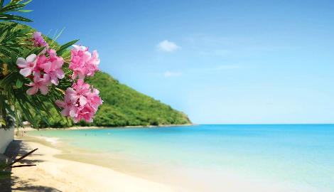 Декриминализация на Багамских островах