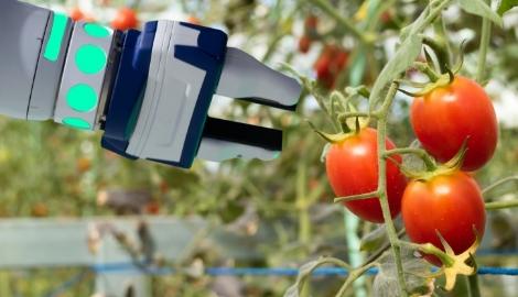 Агророботы покоряют бизнес