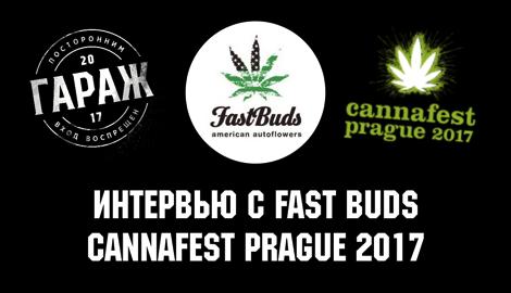 «Гараж»: эксклюзивное интервью FastBuds на Cannafest'17