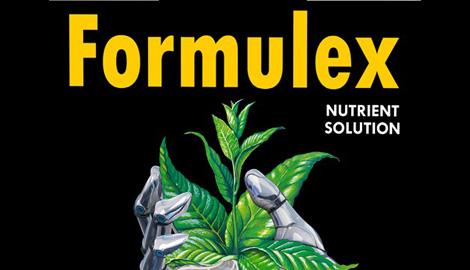 Formulex – одна формула на весь цикл!