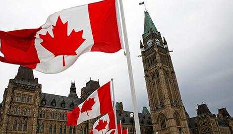 Канадцы продолжают покупать mj у дилеров, а не в официальных магазинах