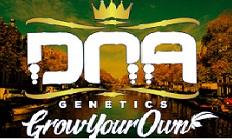 Я есть DNA: Grow Your Own