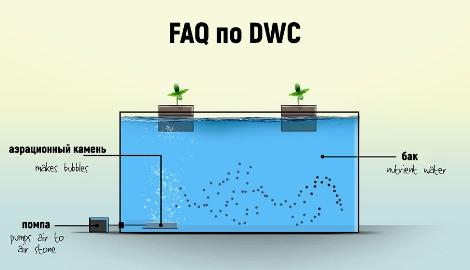 FAQ по DWC