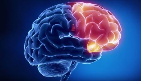 Ученые: мозг подростков меняется с первых затяжек