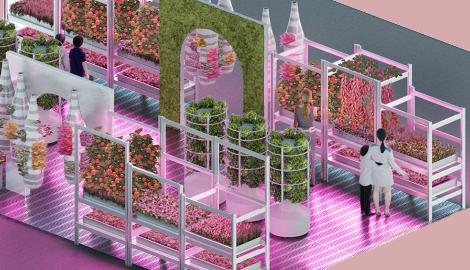 IKEA проектирует агроферму для дома