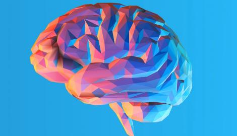 Исследование: Медицинский каннабис делает нас умнее