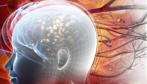 Ученые выяснили как каннабиноиды влияют на нейроны