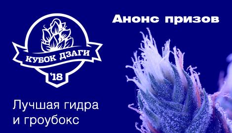 """Анонс призов DzagiCup`18: """"Лучшая гидра"""" и """"Лучший гроубокс"""""""