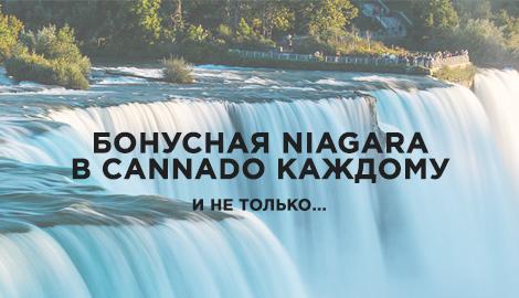 Бонусная Niagara в Cannado каждому!