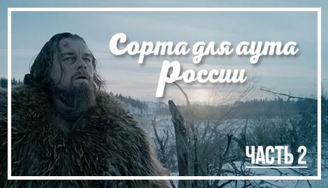 Сорта для аута России. Часть 2.