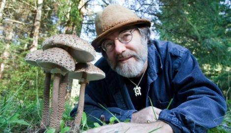 6 способов, которыми грибы могут спасти мир