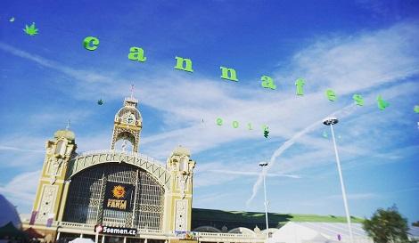 Cannafest 7 глазами посетителей