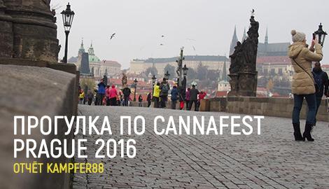 Cannafest Prague 2016. Отчет Kampfer88