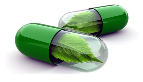 Соединения mj и дрожжей способны помочь в лечении эпилепсии