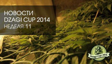 Новости DzagiCup: неделя 11