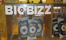 Biobizz – лучший стенд на Cannafest-2013