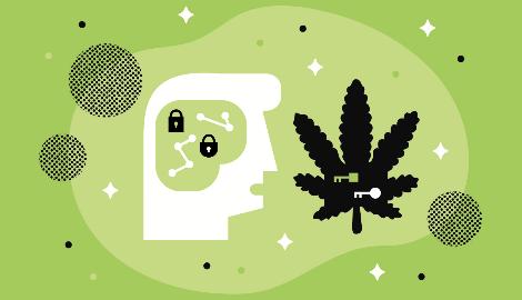 Как марихуана влияет на память?
