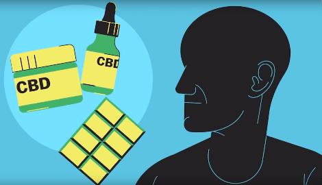Видео: обратная сторона бизнеса КБД