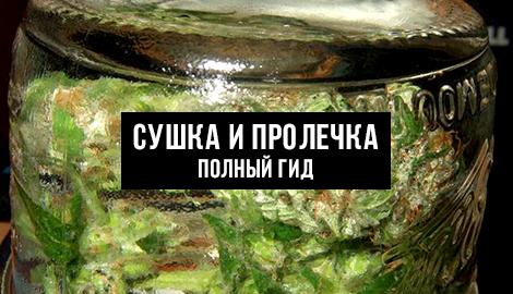Пошаговая инструкция по сушке и пролечке урожая