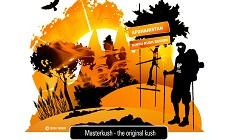 Блог Dutch Passion: MasterKush. Обзор домашнего грова