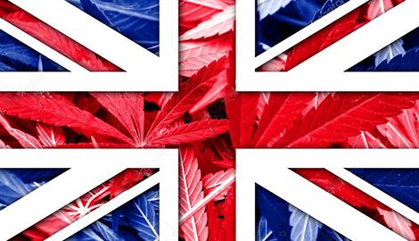 В Великобритании задумались о легализации