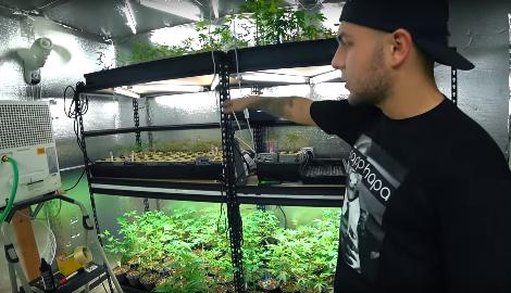 Видео: Нелегальная аптека по продаже марихуаны в США