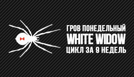 Гров понедельный: White Widow fem