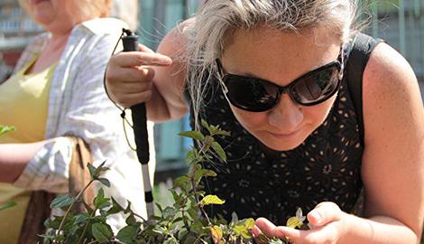 Открылся первый тактильный сад для незрячих