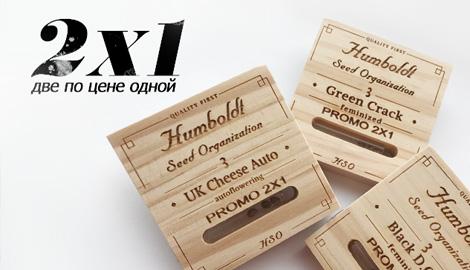 Две пачки Humboldt по цене одной!