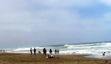 Видео: Марихуановый пляж