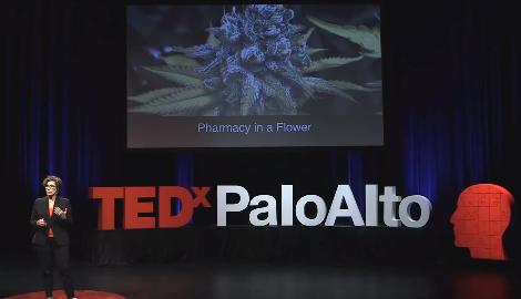 Видео: Каннабис - отделяя науку от шумихи