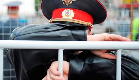 В Мурманской области полицейский вырастил 100 кустов mj