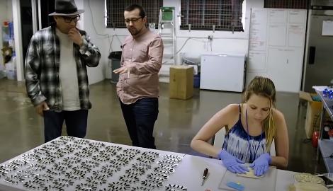 Видео: Микродозинг – будущее марихуаны?